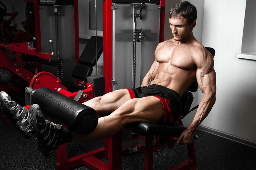 Best Leg Extension
